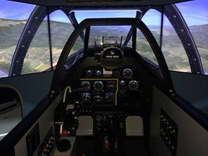 Pesawat simulasi (itu pemandangannya)